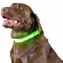 Furhaven LED Safety Pet Collar - Green (Small)