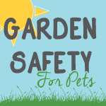 Garden Safety for Cats and Dogs