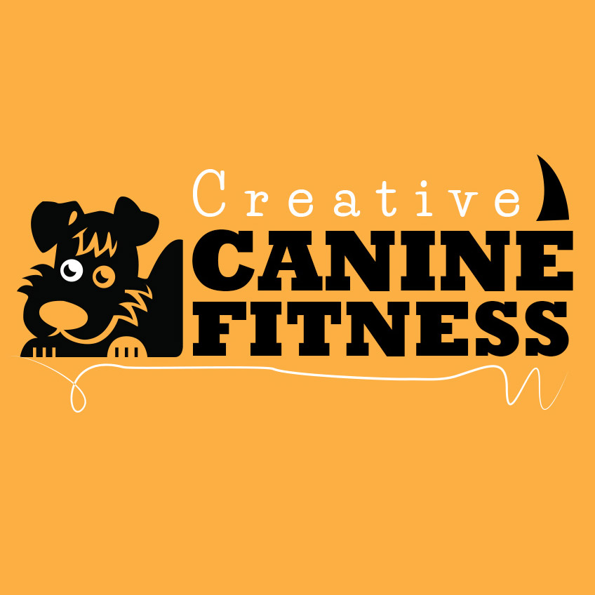 Get Creative With Canine Fitness