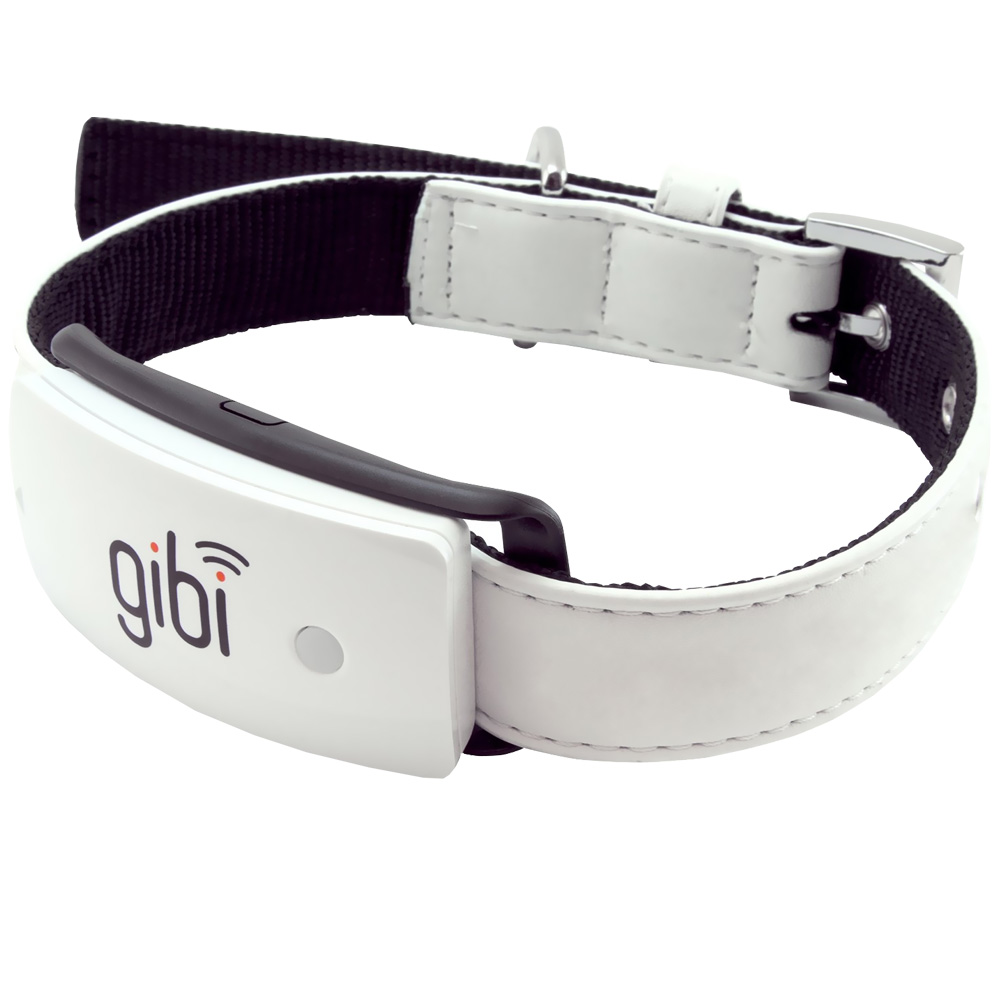 Gibi Pet Location GPS Service Unit im test