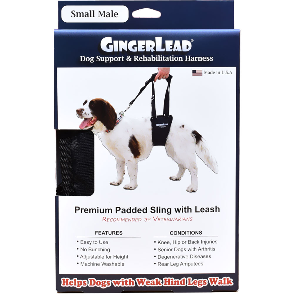 GingerLead Dog Support & Rehabilitation Harness - Small Male im test