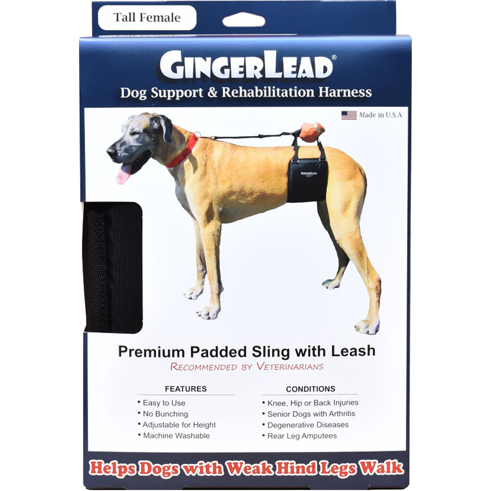 GingerLead Dog Support & Rehabilitation Harness - Tall Female im test