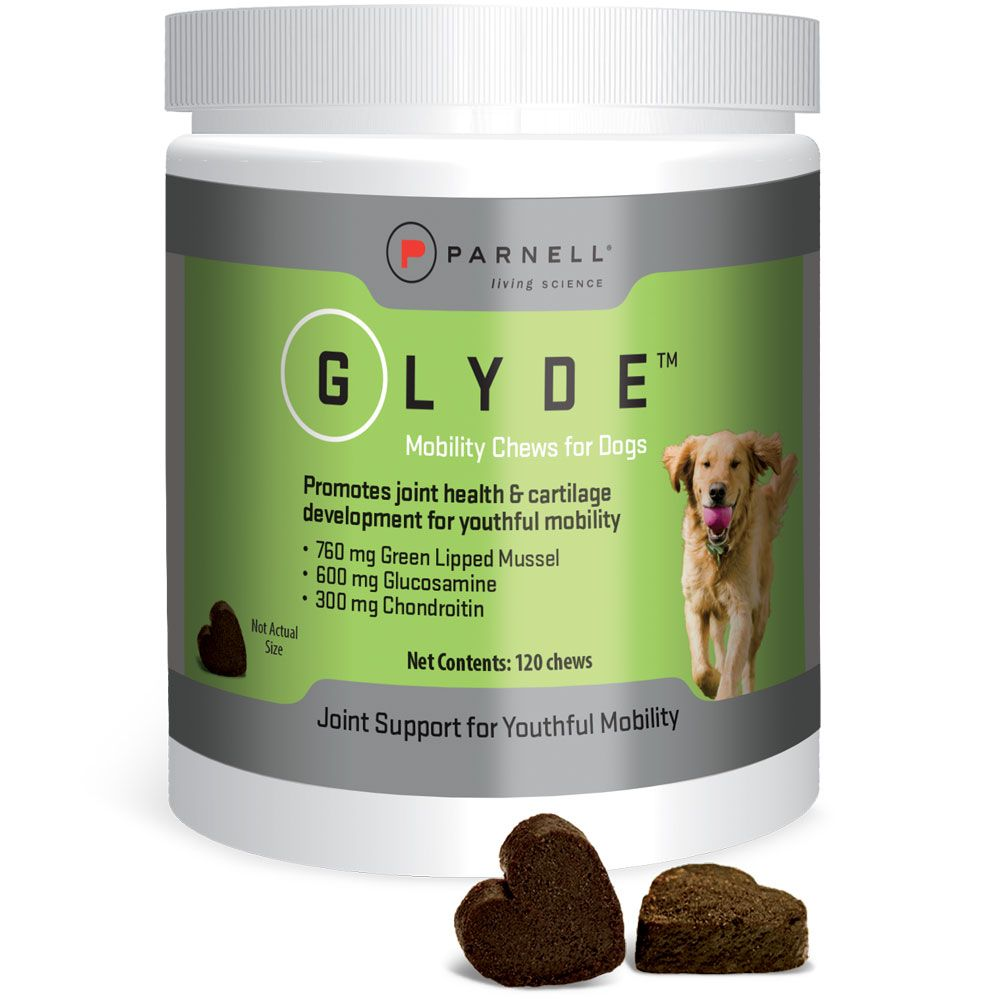 GLYDE-MOBILITY-CHEWS-DOGS-120-COUNT
