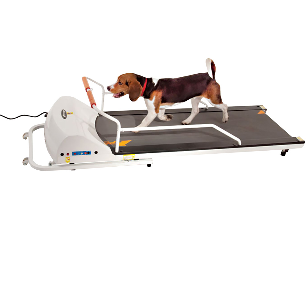 GoPet Treadmill - Small-Medium - For Dogs - from Entirely Pets