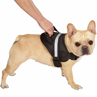 GUARDIAN-GEAR-EXCURSION-HARNESS-BLACK-19IN