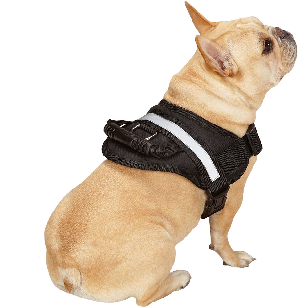 GUARDIAN-GEAR-EXCURSION-HARNESS-BLACK-36IN