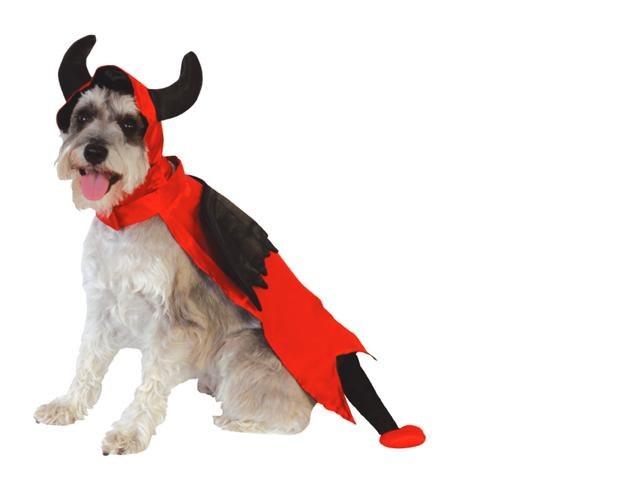 Image of Halloween Devil Costume - SMALL