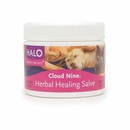 HALO Herbal Healing Salve (2 oz)