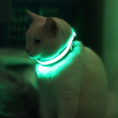 HALO-MINI-LED-SAFETY-DOG-COLLAR-GREEN-SMALL