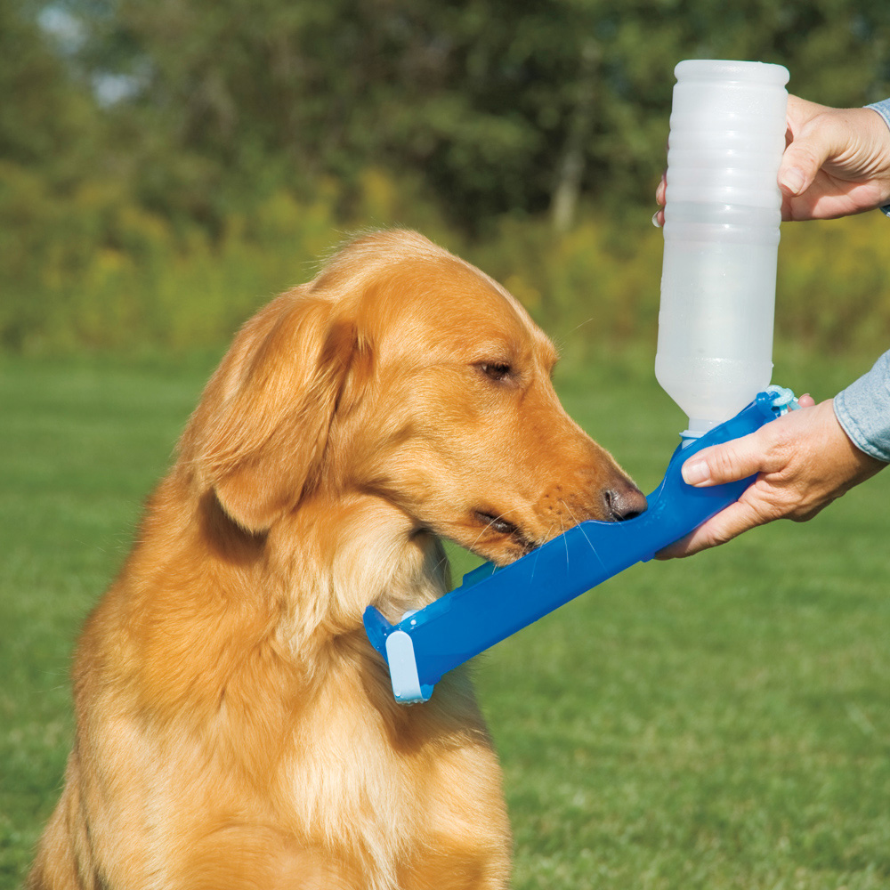 The Portable Pet Water: DOGWATER