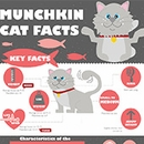 Have You Ever Heard Of A Munchkin Cat?