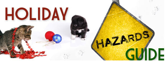 Holiday Hazards Guide