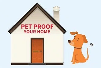 Home Hazards For Pets [Infographic]
