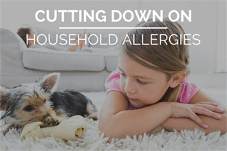 How to Cut Down on Household Allergies
