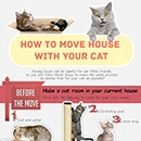 How To Move Houses With Your Cat
