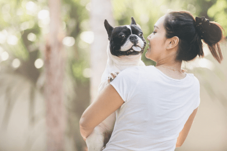 How to Treat Fungal Yeast Infections in Dogs