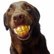Humunga Bling Teeth Ball - One Size