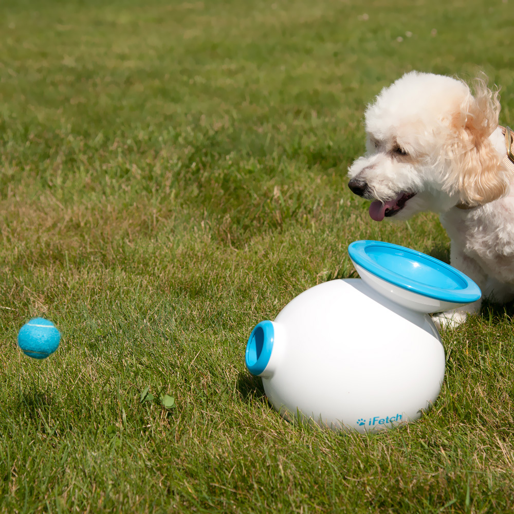 IFETCH-INTERACTIVE-DOG-BALL-LAUNCHER