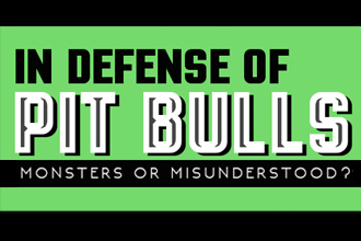 In Defense Of Pit Bulls [Infographic]