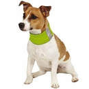 Insect Shield Neck Gaiter Medium - Green