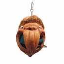 Java Wood Toy - Parrot Head