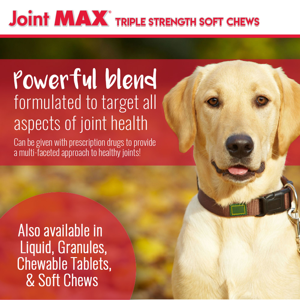 JOINT-MAX-TRIPLE-STRENGTH-SOFT-CHEWS