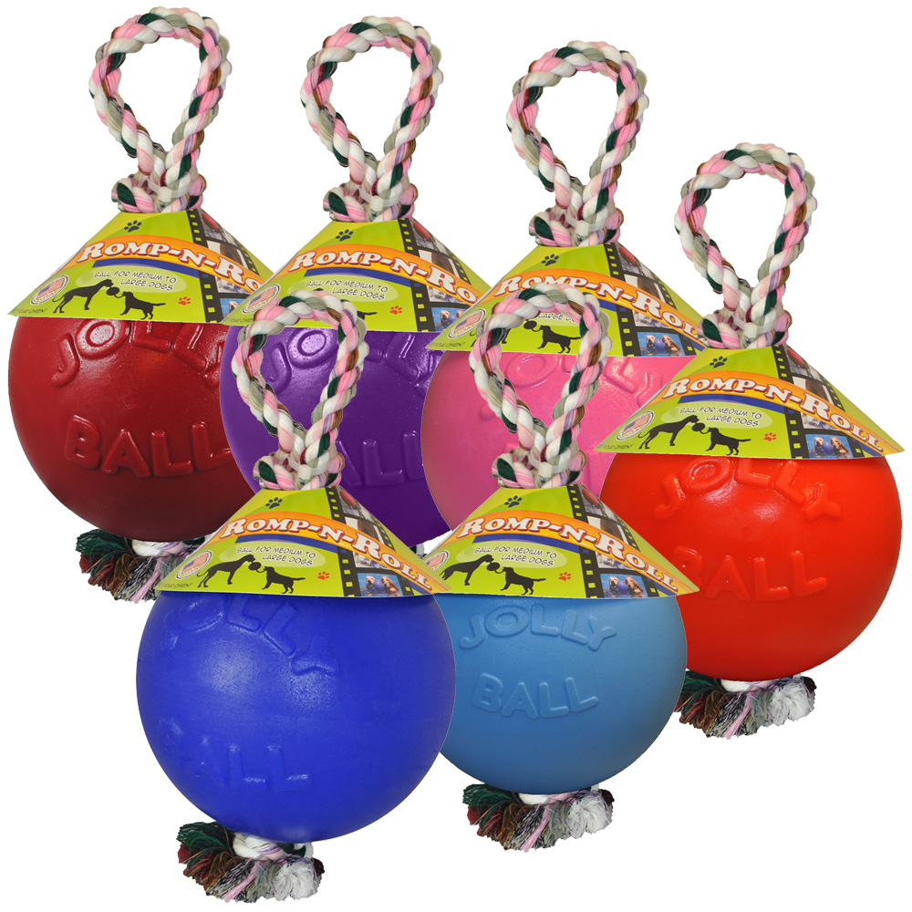 entirelypets.com - Jolly Pets Romp-n-Roll (8 in.) – Assorted 16.29 USD