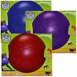 Jolly Pets Teaser Ball with Inside Ball (6 in) - Assorted