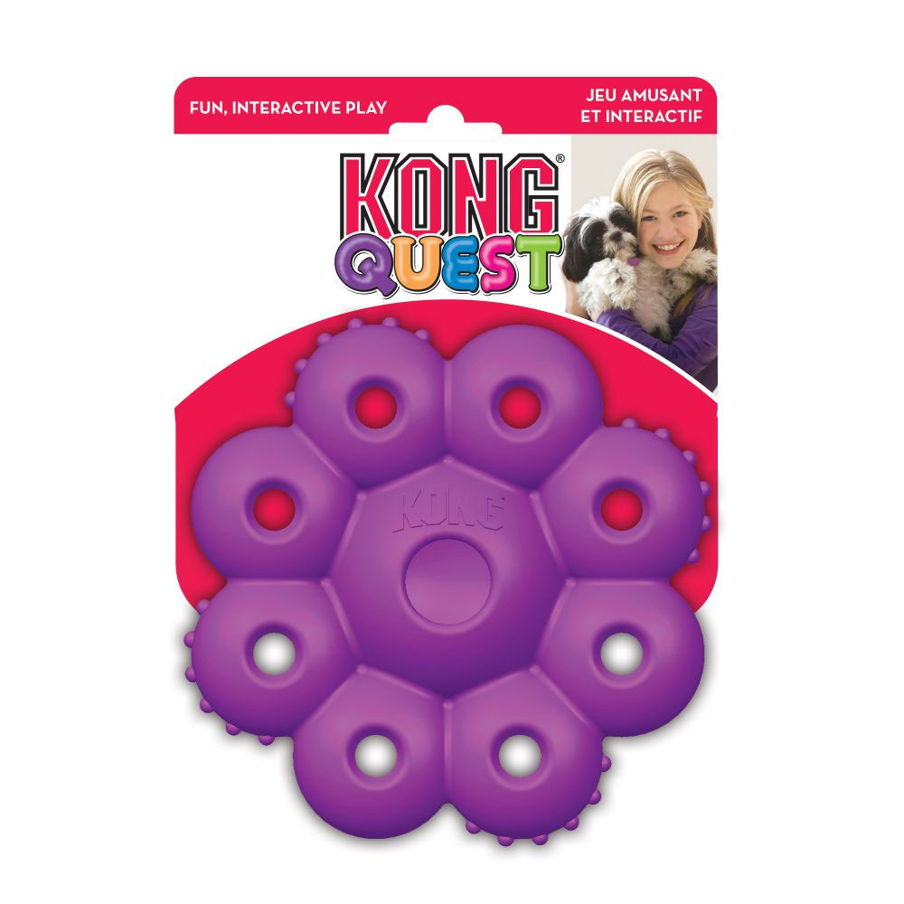 KONG-QUEST-STAR-PODS-SMALL