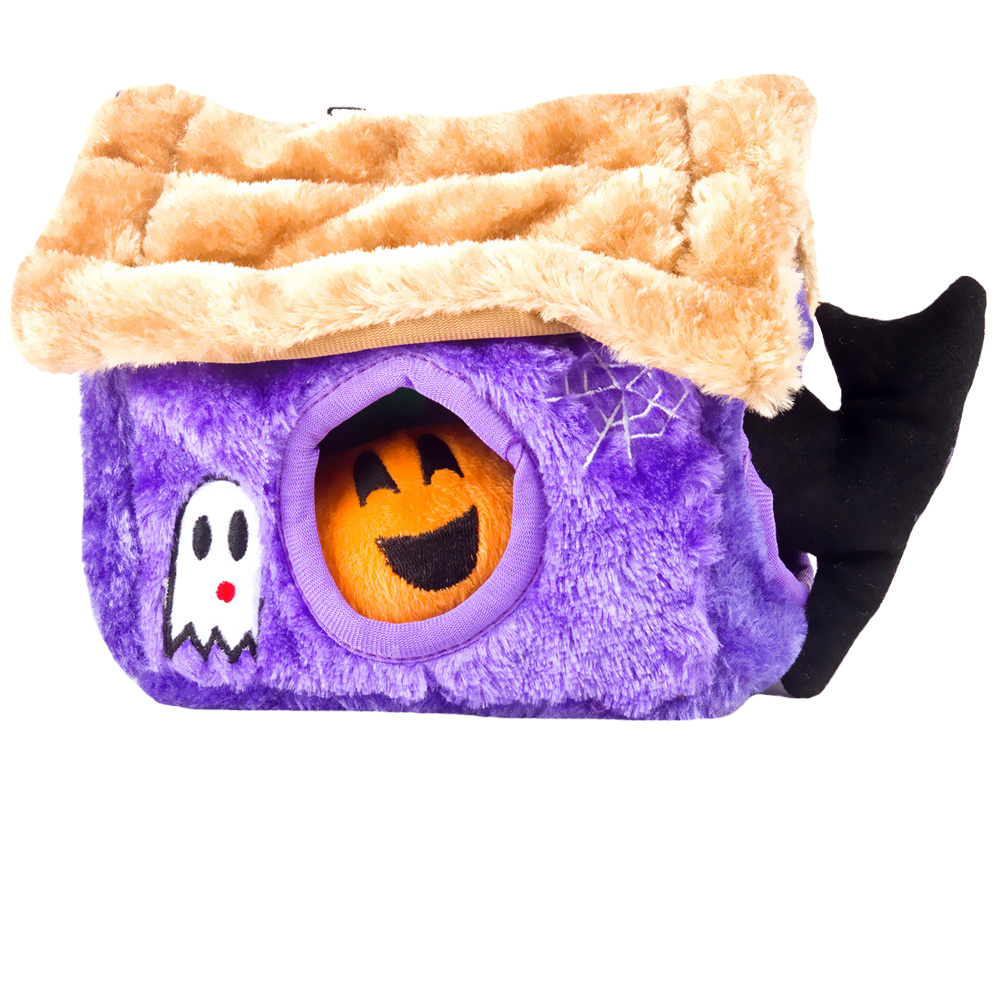 HALLOWEEN-HIDE-A-TOY-HAUNTED-HOUSE