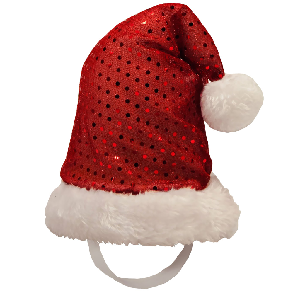 Kyjen Holiday LED Santa Hat - Large im test