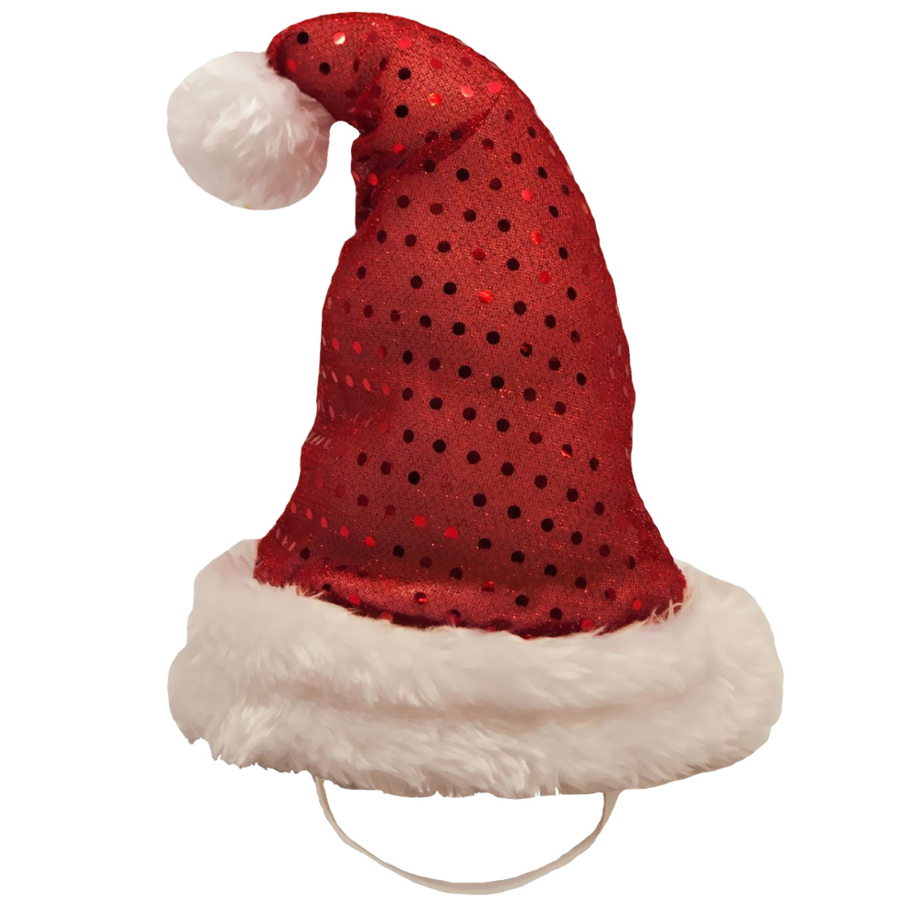 Kyjen Holiday LED Santa Hat - Medium im test