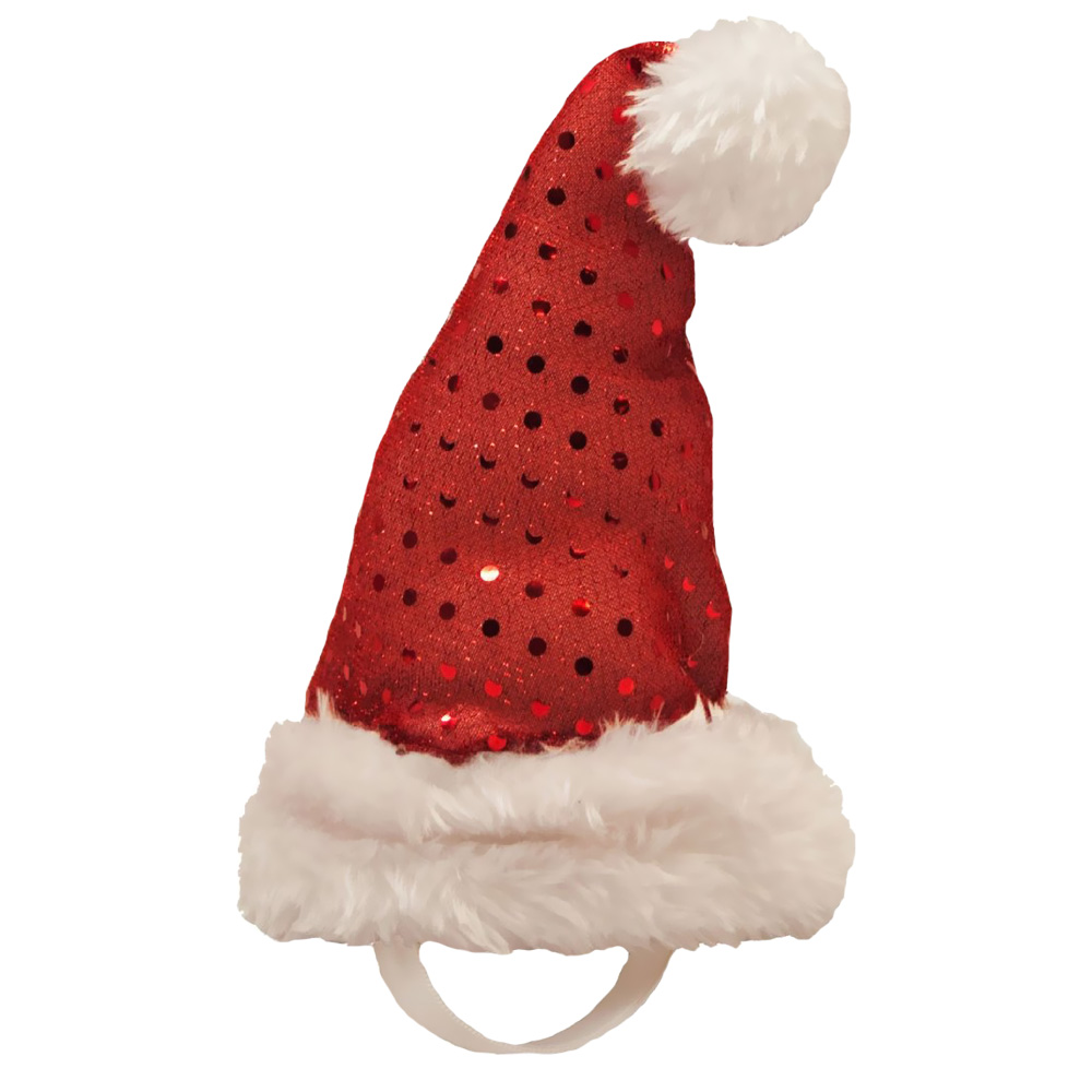 Kyjen Holiday LED Santa Hat - Small im test
