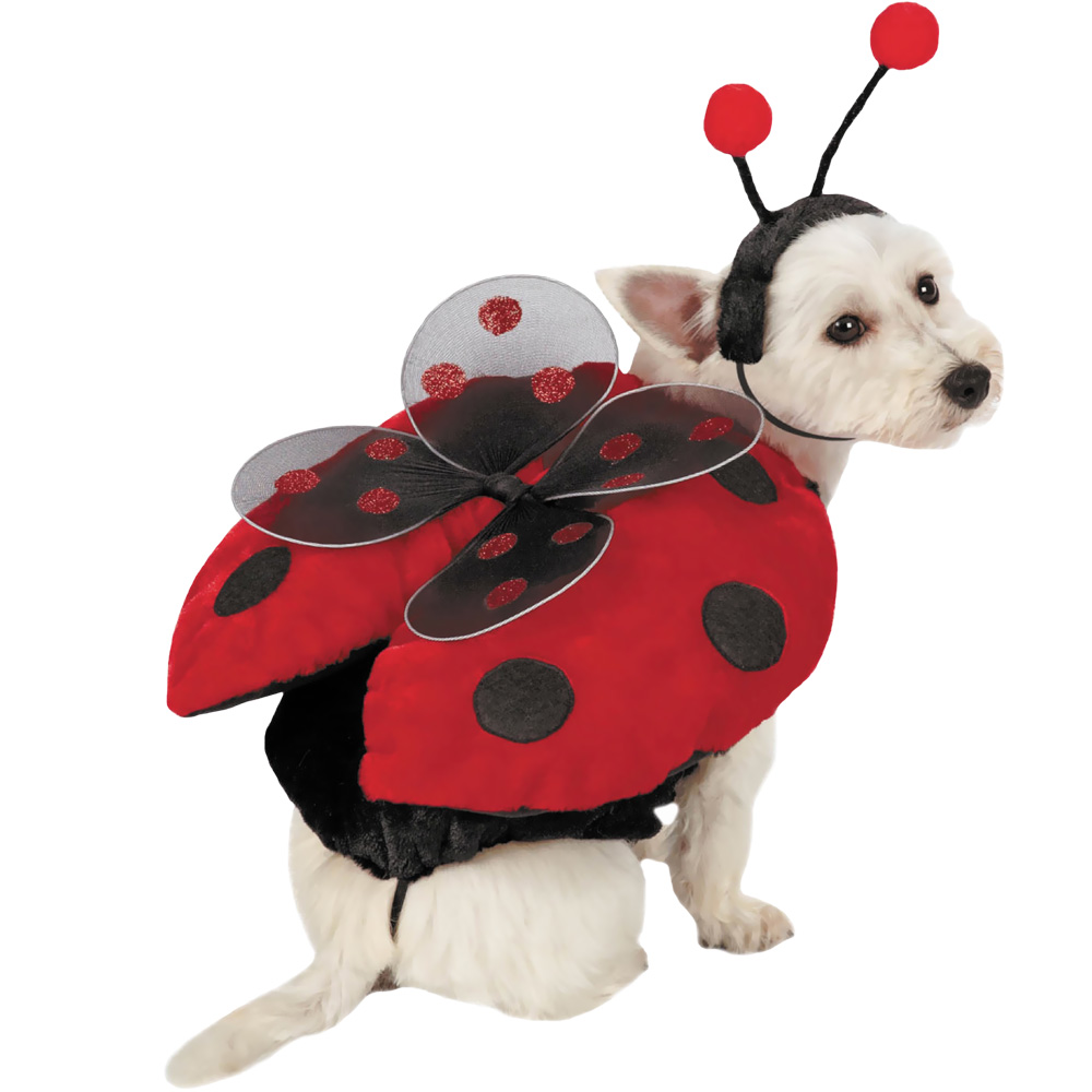 Ladybug with Wings Dog Costume - XSMALL im test