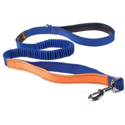 LaiFug Bungee Dog Leash - Blue (48 Inch)