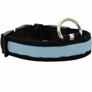 LED Safety Electric Glow Collar - Blue (Medium)