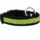 LED Safety Electric Glow Collar - Green (Medium)