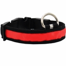 LED Safety Electric Glow Collar - Red (Small)
