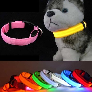 WHITE-LED-SAFETY-ELECTRIC-GLOW-COLLAR-SMALL
