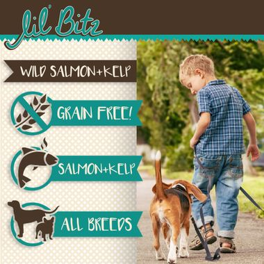 LIL-BITZ-WILD-SALMON-TREATS