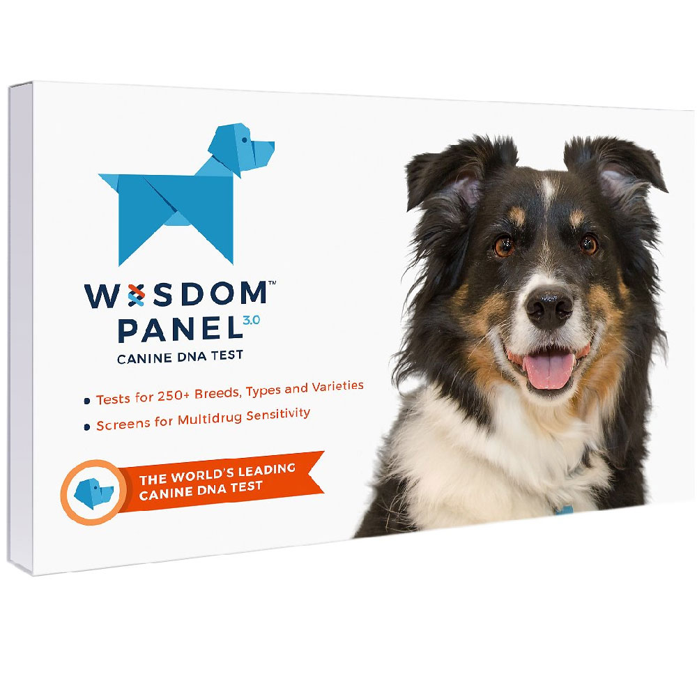 Mars Vet Dog Wisdom Panel 3.0 DNA Swab Test Kit im test
