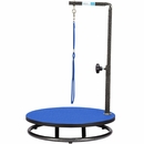 Master Equipment - Small Pet Grooming Table - Blue