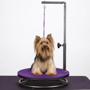 MASTER-EQUIPMENT-SMALL-PET-GROOMING-TABLE-PURPLE