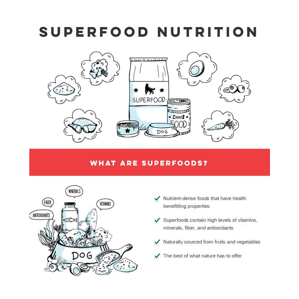 Various food under title of Superfood Nutrition. What are superfoods?