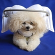 Muffin's Halo White Angel Wings - XLarge