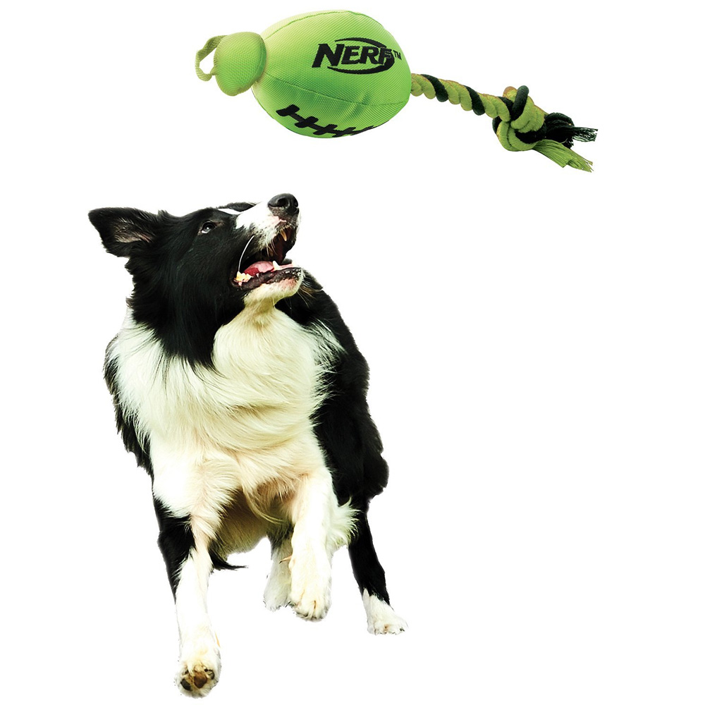 NERF-DOG-FOOTBALL-FLING-SLINGER-RED-BLACK