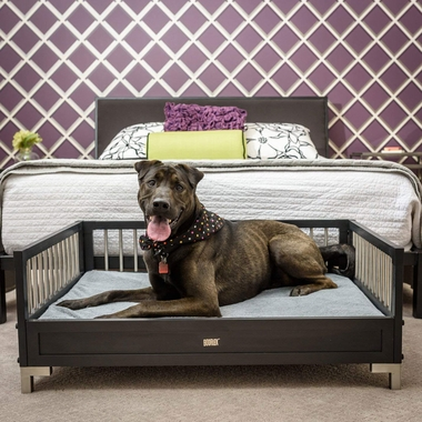 NEW-AGE-PET-RAISED-DOG-BED-GREY-LARGE