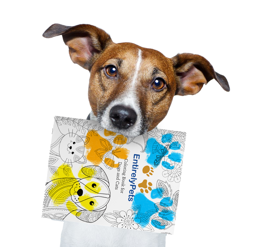 NEW & FREE Coloring Book for Dogs & Cats! from EntirelyPets