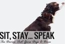 New Invention Gives Your Dog A Voice