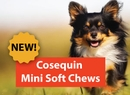 Nutramax Introduces New Cosequin Mini Soft Chews to Provide a Delectable Joint Supplement to Dogs Under 25 Pounds